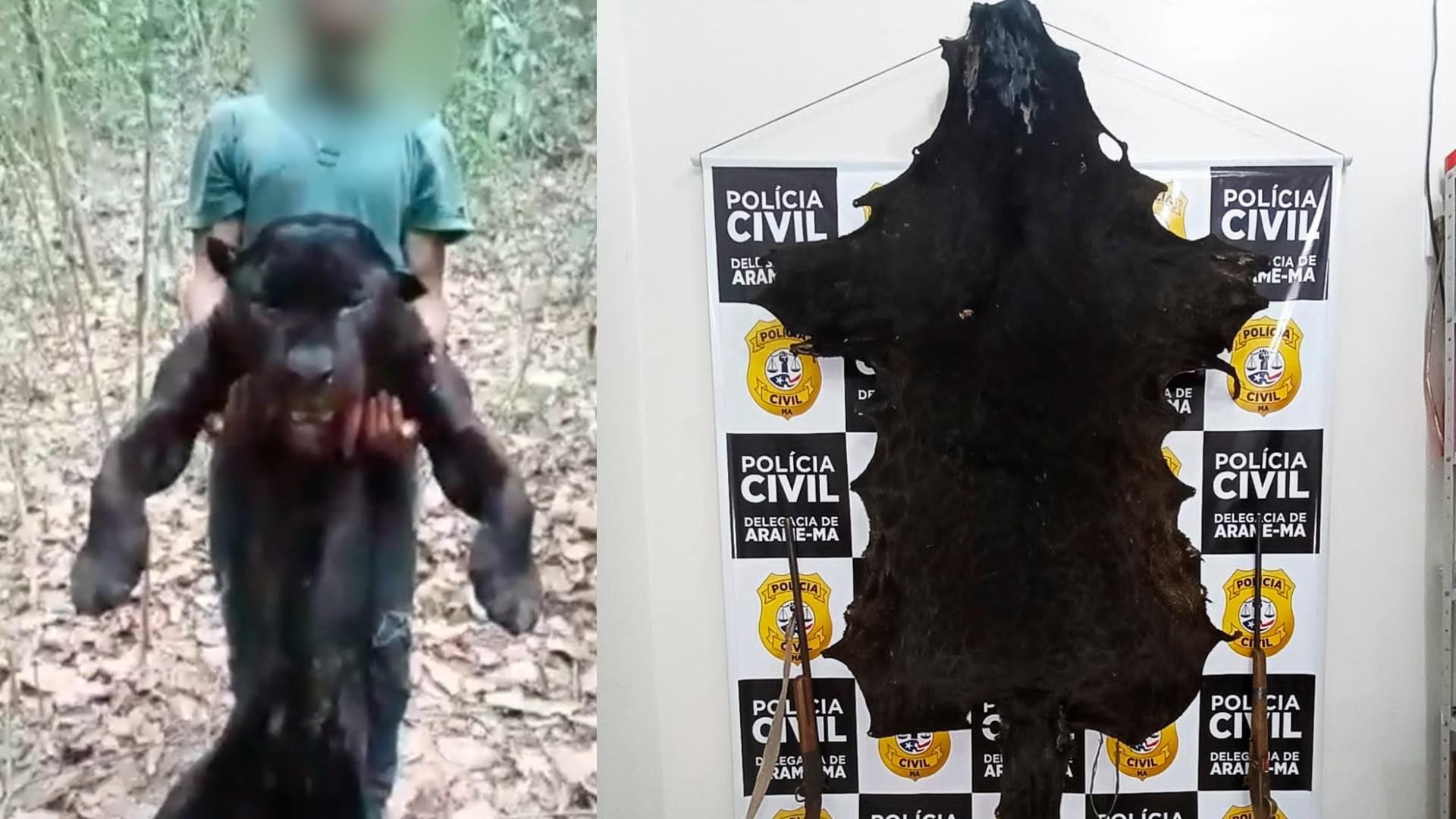 Homem é preso no Maranhão suspeito de matar onça e divulgar vídeo na internet