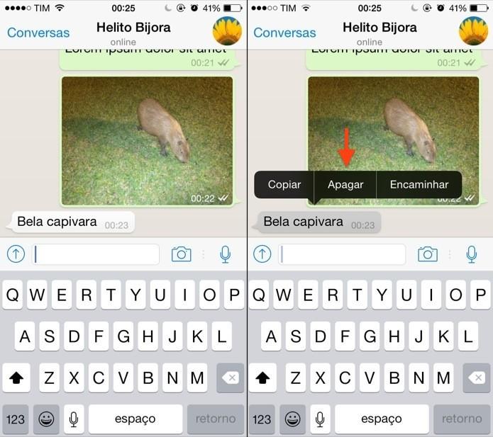 Excluindo mensagem no WhatsApp para iOS (Foto: Reprodução/Helito Bijora)