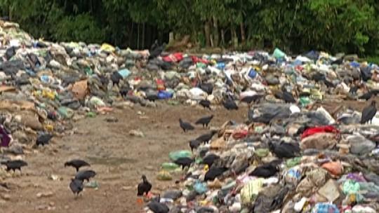 Perícia faz mapeamento de área atingida por lixão em Biritiba Mirim