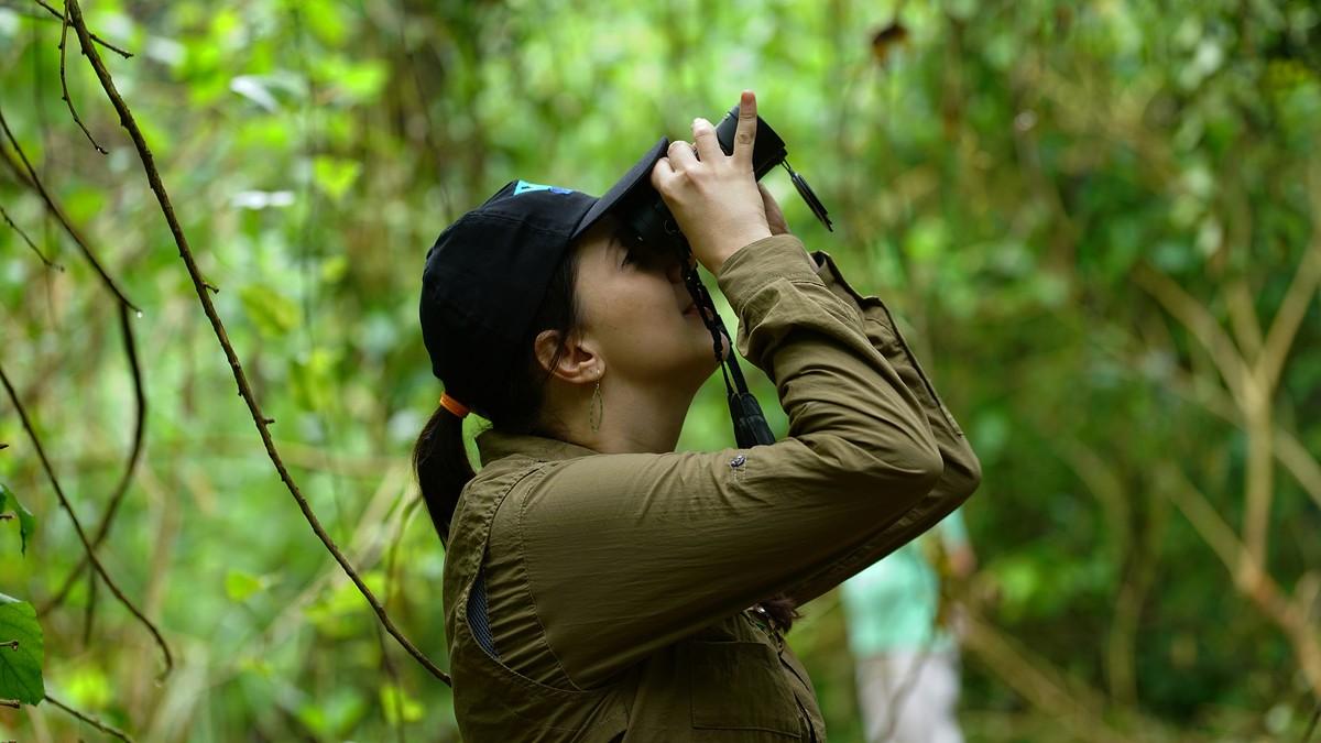 Evento #VemPassarinhar é dica para observar aves com toda a família
