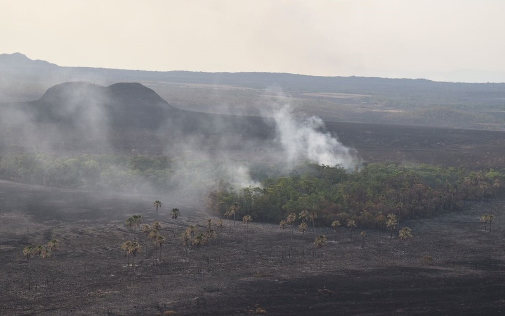 Polícia Civil acredita que incêndio na Chapada dos Veadeiros seja criminoso, em Goiás (Foto: Vitor Santana/G1)