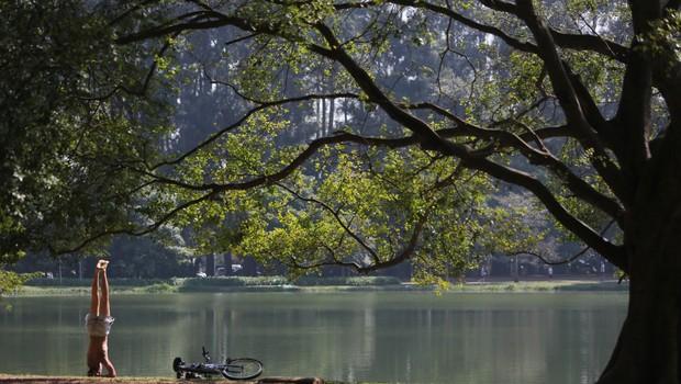 Parque do Ibirapuera : ponto de lazer, exercícios e passeios com a família (Foto: Fábio Arantes/SECOM)