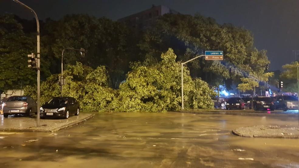 Uma árvore tombou na Rua Artur Araripe, na Gávea, Zona Sul do Rio — Foto: Gustavo Wanderley/ G1