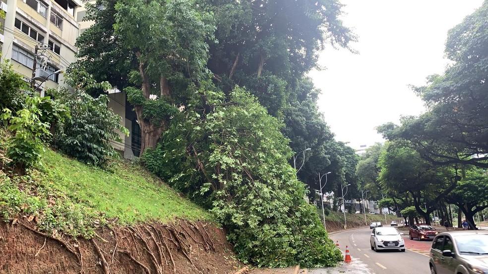 Conforme a Transalvador, a queda foi registrada por volta de 7h, próximo ao retorno para o Calabar, no sentido do bairro do Barris. — Foto: Victor Silveira / TV Bahia
