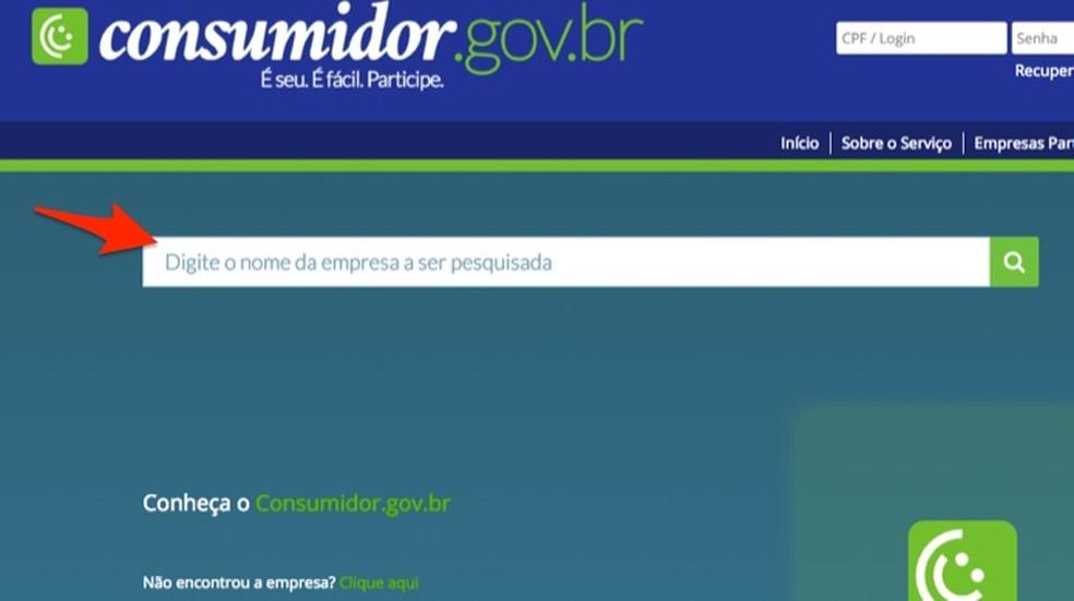 Ação para usar a ferramenta d busca do site Consumidor.gov.br para consultar uma empresa — Foto: Reprodução/Marvin Costa