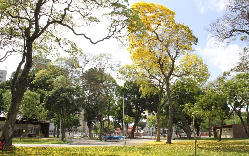 Parque Solón de Lucena, a Lagoa, também vai ter o acesso fechado — Foto: Diogo Almeida/G1/Arquivo