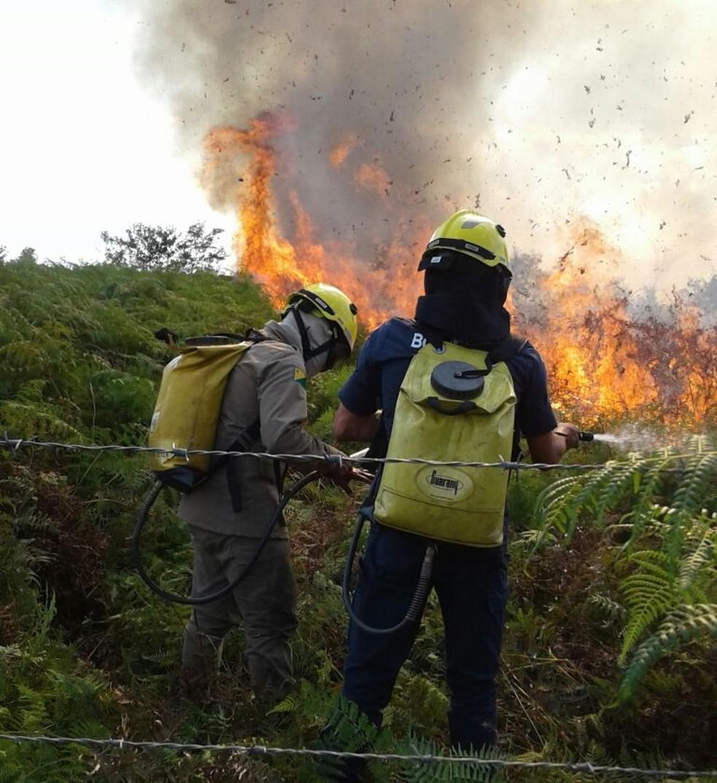 Incêndio em área de terra se alastrou rapidamente  (Foto: Corpo de Bombeiros/ Divulgação)