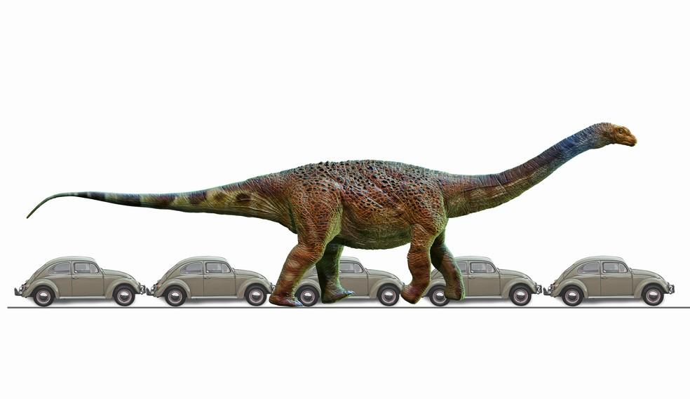 'Arrudatitan maximus', espécie do grupo titanossauro que viveu no interior de São Paulo, tinha 22 metros de comprimento — Foto: Deverson Pepi/Arte/Divulgação