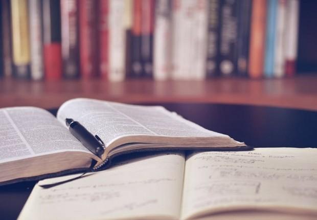 Ler - leitura - estudo - aprendizado - educação - ensino (Foto: Pexels)