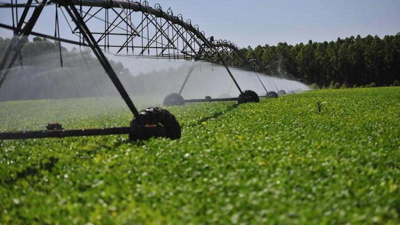 Irrigação-água-agricultura (Foto: Globo Rural)