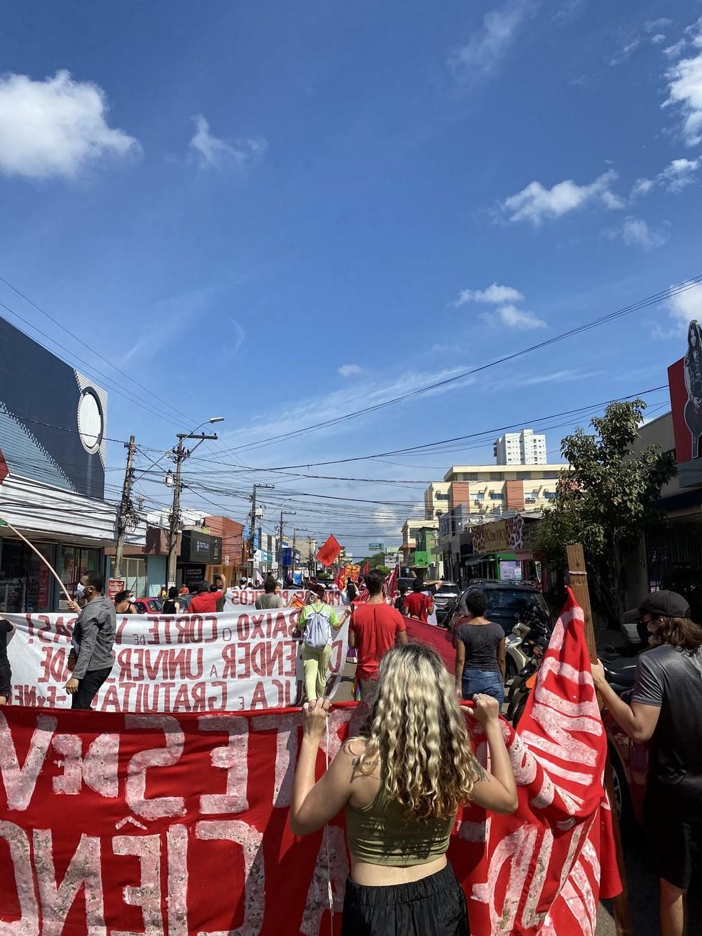 Grupo se reuniu na praça Estrada de Ferro Madeira Mamoré, no centro da capital rondoniense — Foto: Redes Sociais/Jamile Pinheiro