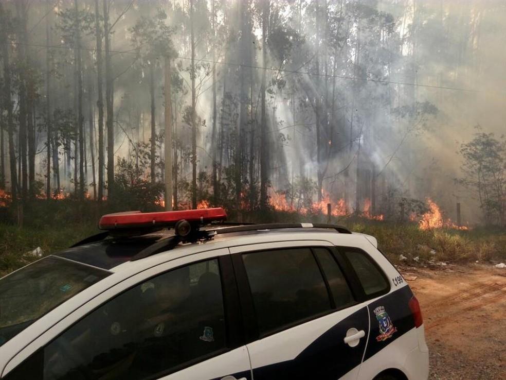 Incêndio atinge área de eucaliptos em Pilar do Sul (Foto: Jornal da Cidade Salto de Pirapora/Divulgação)