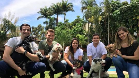 'Meu Pet é o Bicho': aprenda a como sociabilizar cães traumatizados
