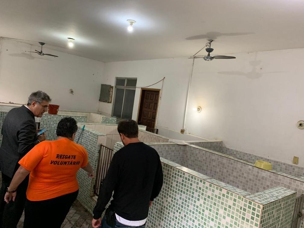 Agentes inspecionam os cubículos do canil — Foto: OAB/RJ