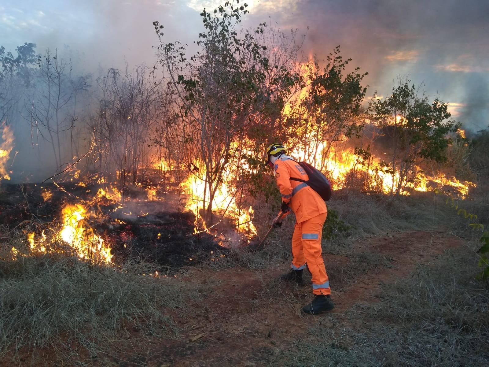 Bombeiros controlam incêndio em área rural de Salinas