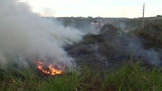 Destruição da Amazônia pode intensificar aquecimento global
