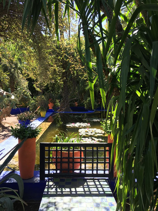 Vista do Jardin Majorelle