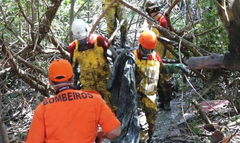 Equipes trabalhando na região de mangue neste domingo  — Foto: SSP/SE