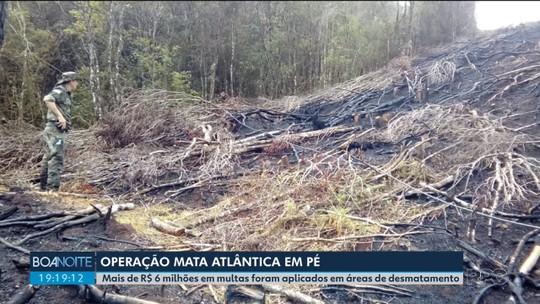 Operação contra desmatamento na Mata Atlântica identifica 688 hectares de floresta devastada ilegalmente, no Paraná