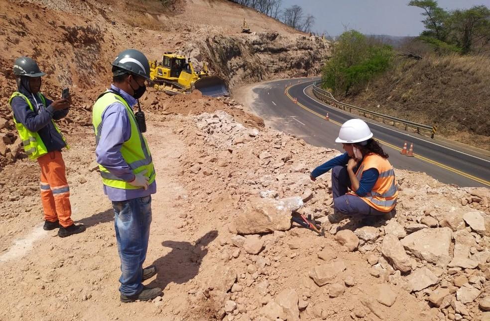 Novos fósseis de dinossauro são achados durante obras em rodovia na região de Marília — Foto: Entrevias/Divulgação