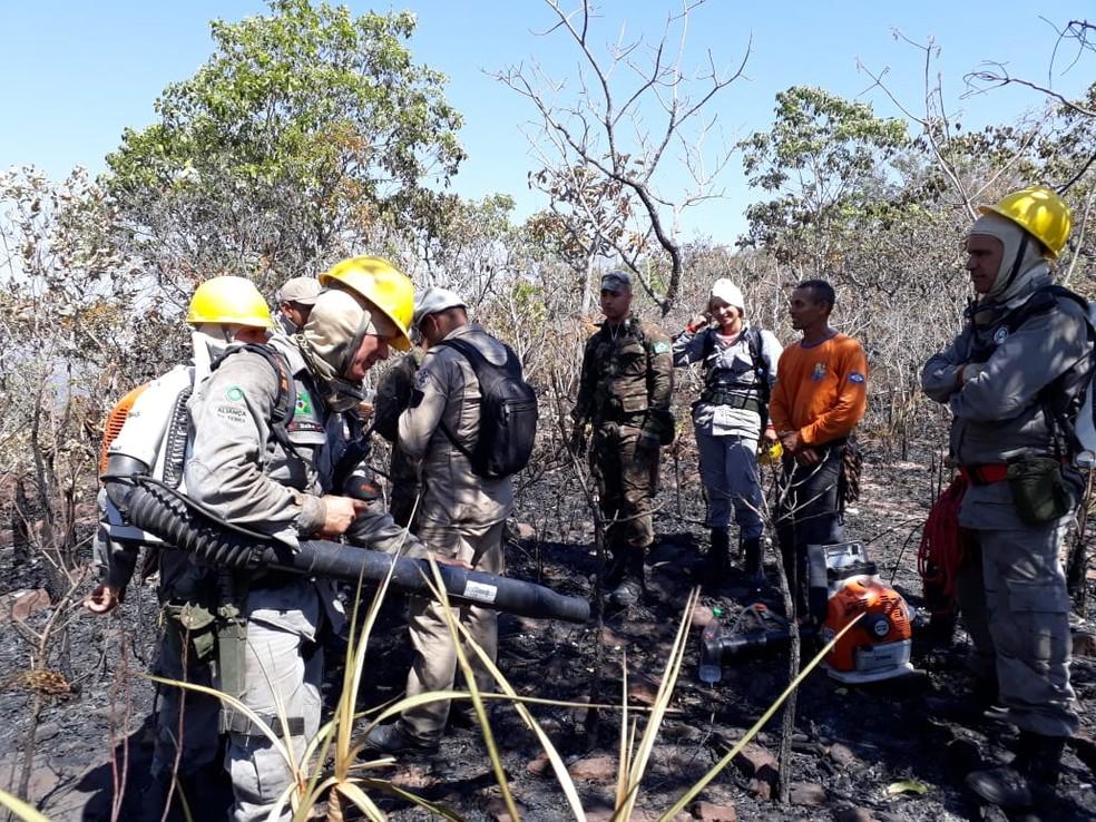 Incêndio foi controlado com ajuda de brigadistas e voluntários (Foto: Divulgação)