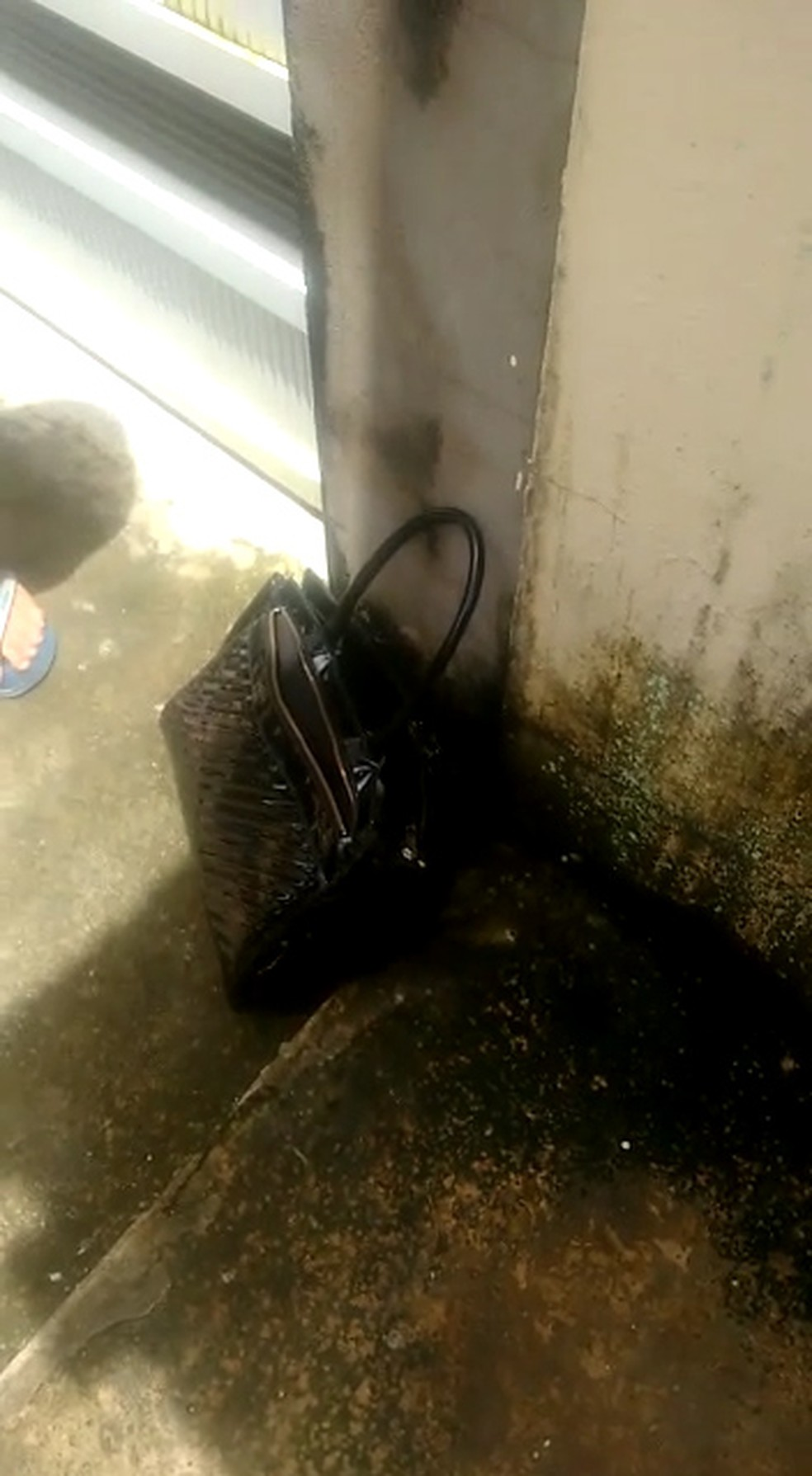 Bolsa com recém-nascido foi deixada no portão de uma residência em São Luís — Foto: Reprodução/Redes Sociais
