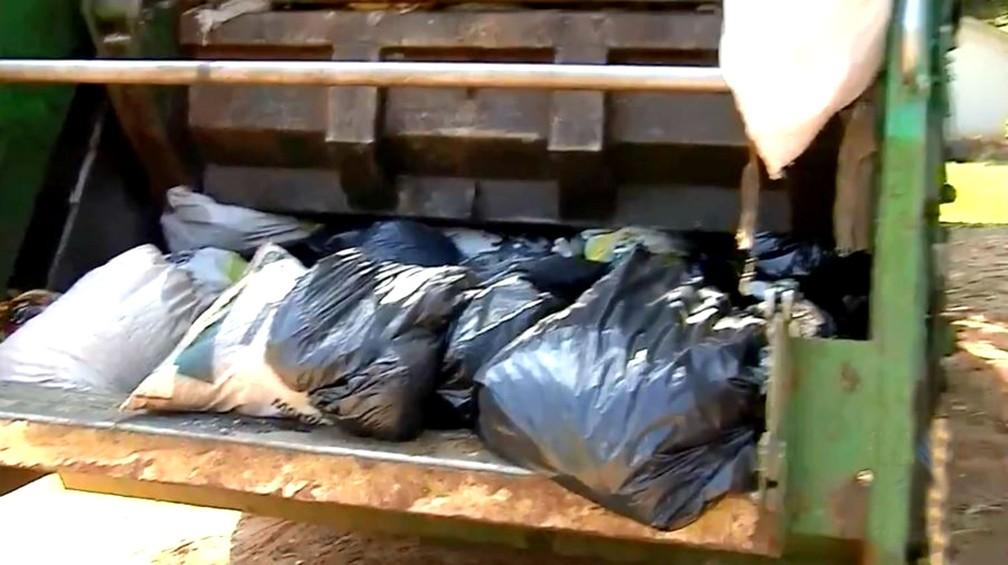 Dinheiro estava dentro de um saco de lixo comum que foi recolhido e prensado pelo caminhão da coleta de Tupã (Foto: TV TEM/Reprodução)