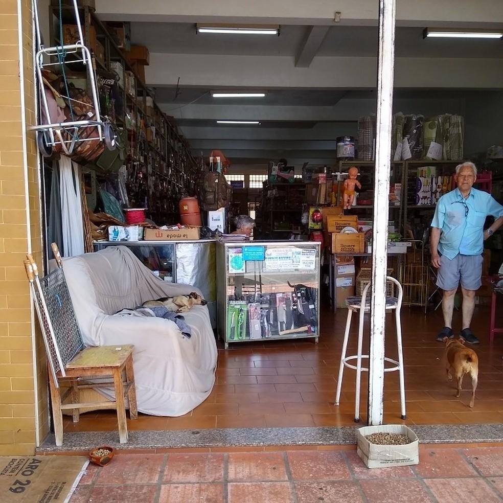 Comerciante de Capão Bonito (SP) colocou sofá e alimento em loja para cães de rua — Foto: Indianara Dominguez/Arquivo Pessoal