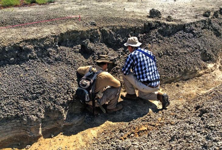 Paleontólogos  Robert DePalma (esquerda) and Jan Smits (direita) examinam fósseis no sítio arqueológicoTanis. (Foto: ROBERT DEPALMA /Universidade do Kansas)