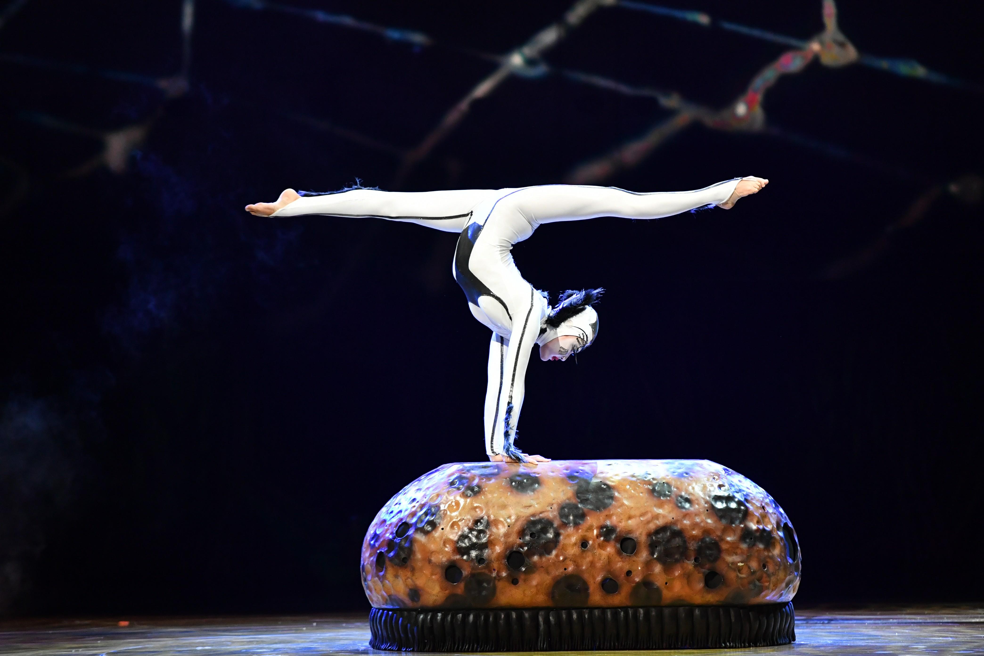 """Contorcionista da Mongólia que cresceu no Brasil se apresenta em """"OVO"""" do Cirque du Soleil (Foto: Divulgação)"""
