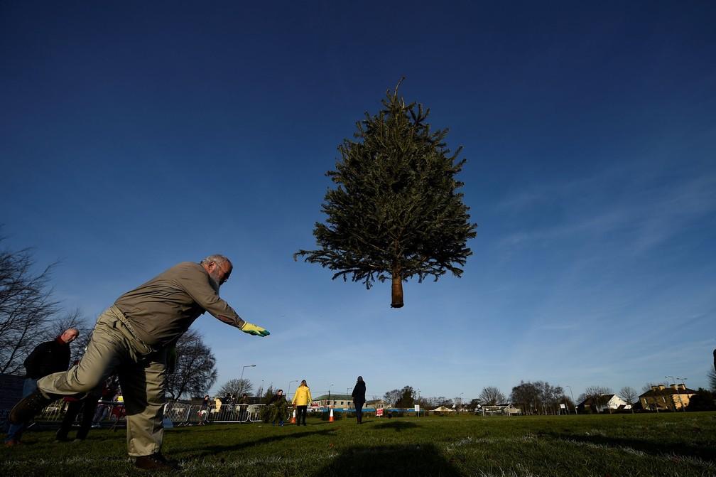 7 de janeiro - Homem participa de um campeonato de arremesso de árvores de Natal em Ennis, na Irlanda (Foto: Clodagh Kilcoyne/Reuters)