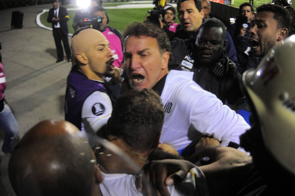 Cuca se desentende com a polícia ao tentar defender torcedor que invadiu o gramado (Foto: Marcos Ribolli)