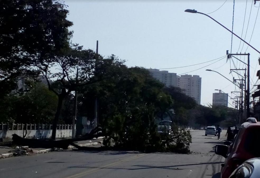 Ninguém ficou ferido e o trânsito não foi alterado em nenhuma das ocorrências (Foto: Divulgação/Internauta)