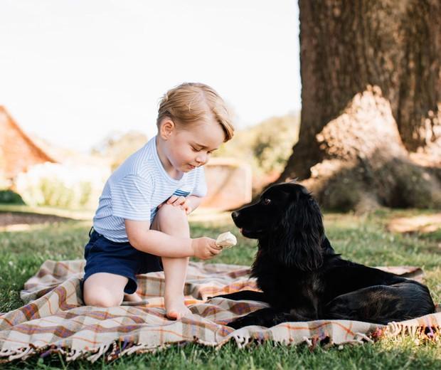 Foto oficial dos 4 anos de George: brincando com cachorro (Foto: Reprodução / @RoyalUK)