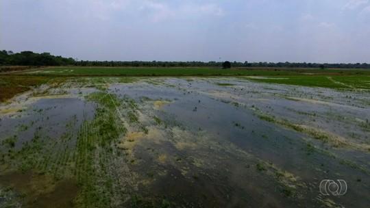 Polícia indiciou mais de 30 fazendeiros por crime ambiental na região do Rio Araguaia