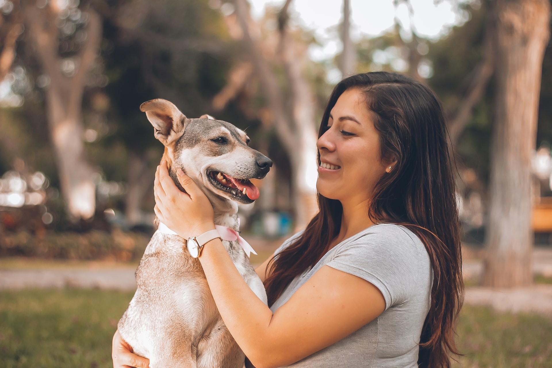 Segundo pesquisa, a adoção de pets é uma tendência que reflete a mudança de comportamento dos brasileiros em relação aos amigos de quatro patas (Foto: Unsplash)
