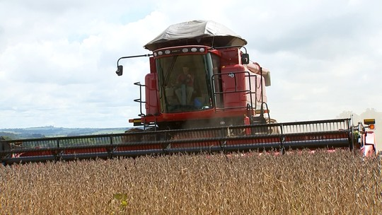 Chuva atrasa colheita de soja no sudoeste paulista