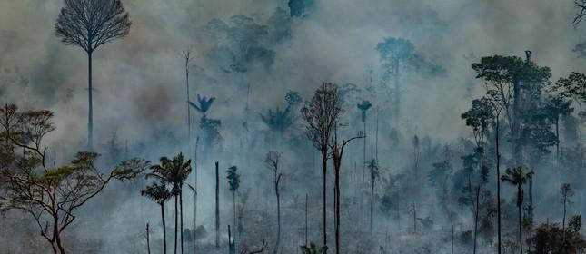 Queimada em Novo Progresso (PA), na Amazônia