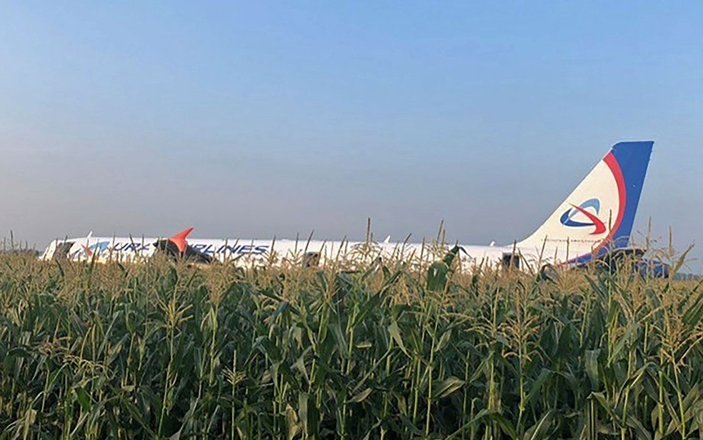 Airbus A321 da Ural Airlines após um pouso forçado em um milharal nos arredores do aeroporto de Zhukovsky, em Moscou — Foto: Comitê de Investigação da Rússia / via AFP Photo