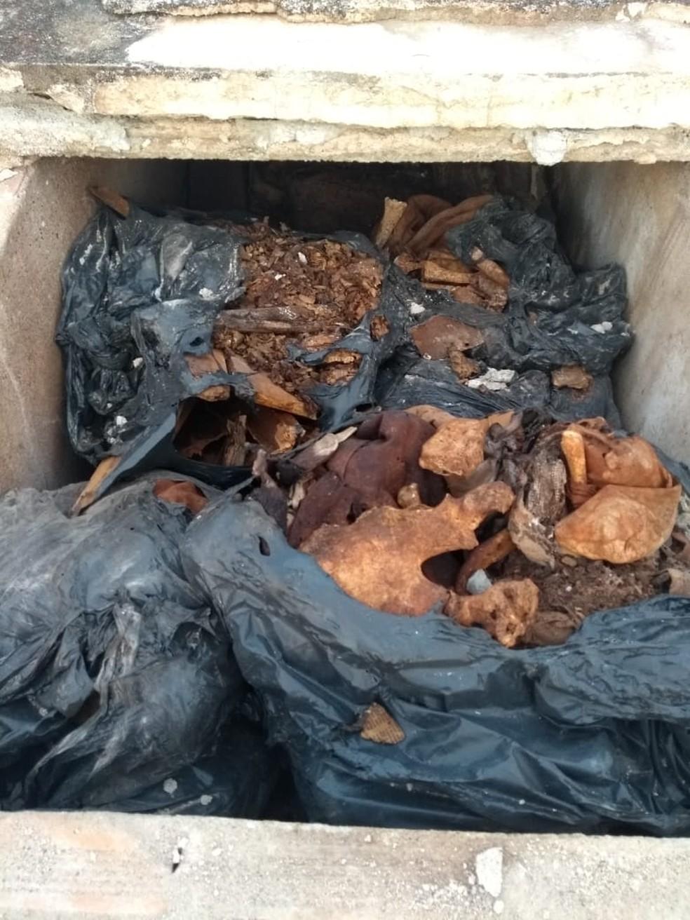 Ossadas eram retiradas do cemitério, conforme a Polícia Civil — Foto: Polícia Civil/Divulgação