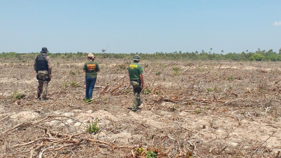 Fiscalização aponta desmatamento ilegal no Ceará — Foto: MPCE/Divulgação