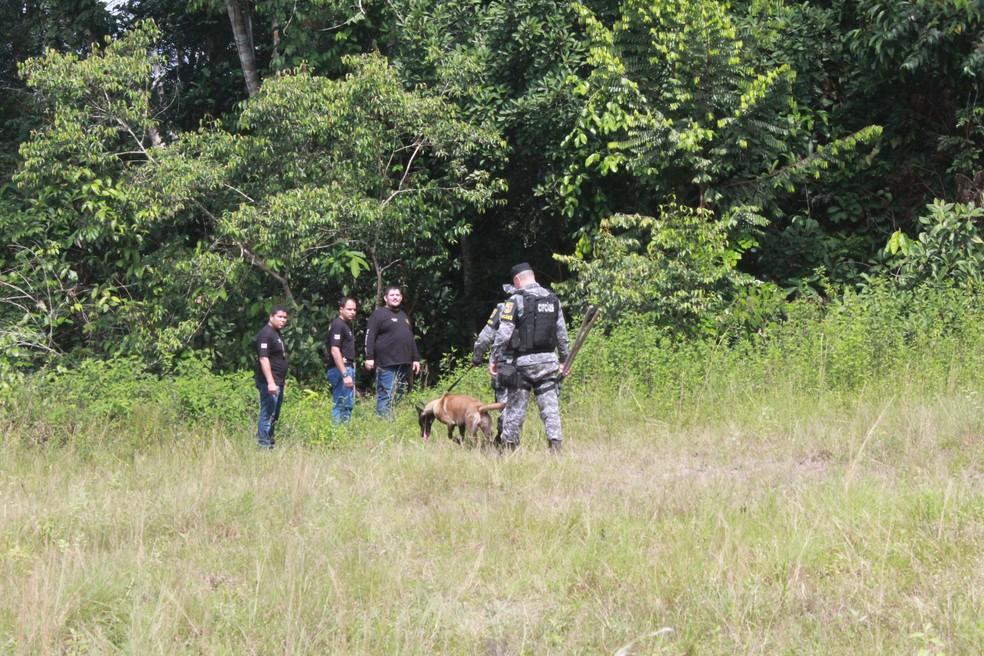 Reserva Florestal Adolpho Ducke, em Manaus — Foto: Eliana Nascimento/G1 AM