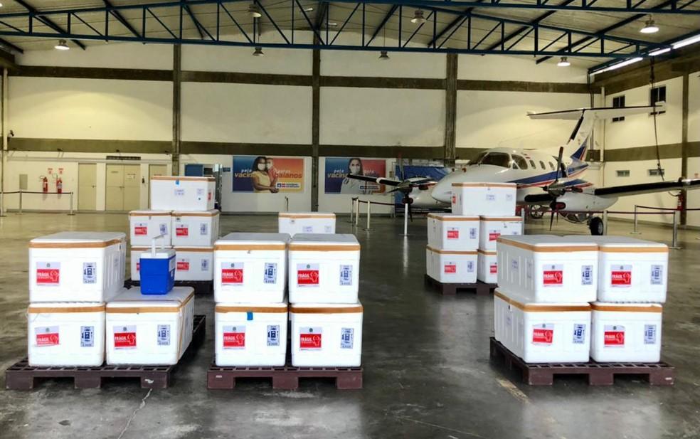Nova remessa de vacinas contra a Covid-19 chega a Bahia — Foto: Divulgação/Governo do estado