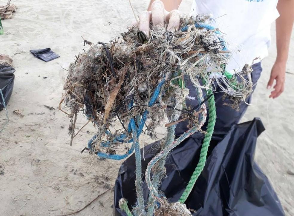 'Ilha de lixo' recolhida durante limpeza em praias da Baixada Santista  (Foto: Divulgação/Gremar)