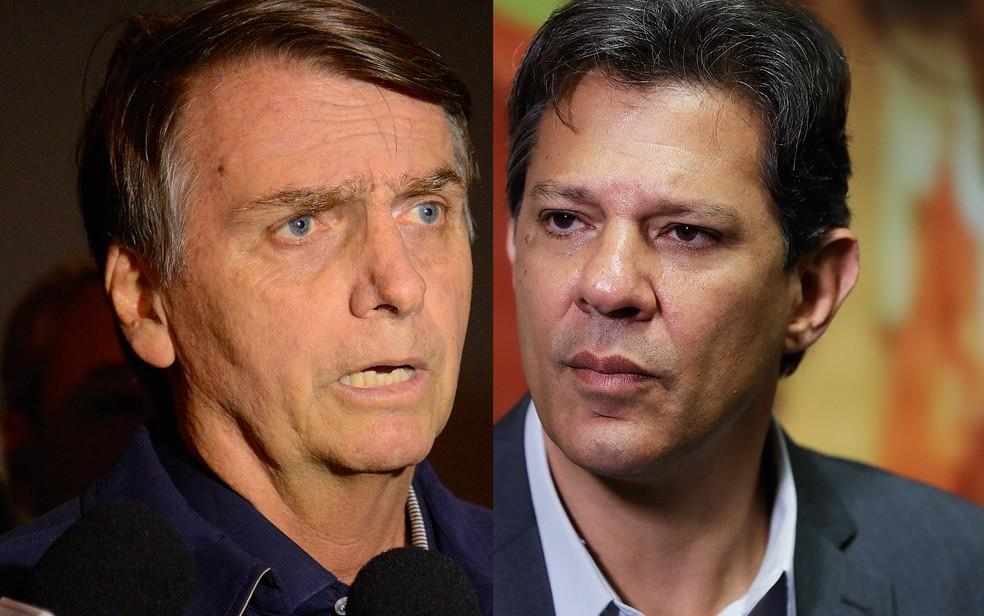 Os candidatos a presidente Jair Bolsonaro (PSL) e Fernando Haddad (PT) — Foto: Fernando Frazão/Agência Brasil e Andre Penner/AP