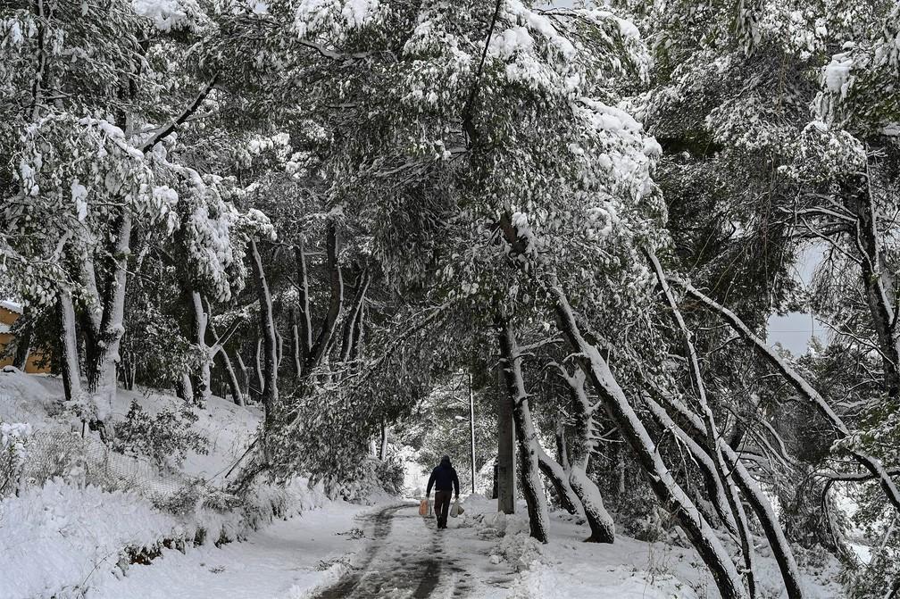 Homem leva compras por via coberta de neve no norte de Atenas, na Grécia — Foto: Aris Messinis/AFP