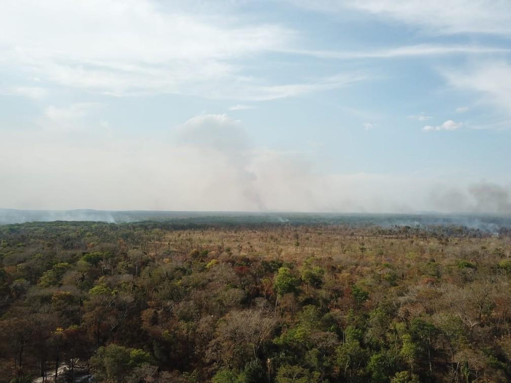Fogos de incêndio são vistos na Terra Indígena (TI) Areões, no município de Nova Nazaré — Foto: Ibama/Divulgação