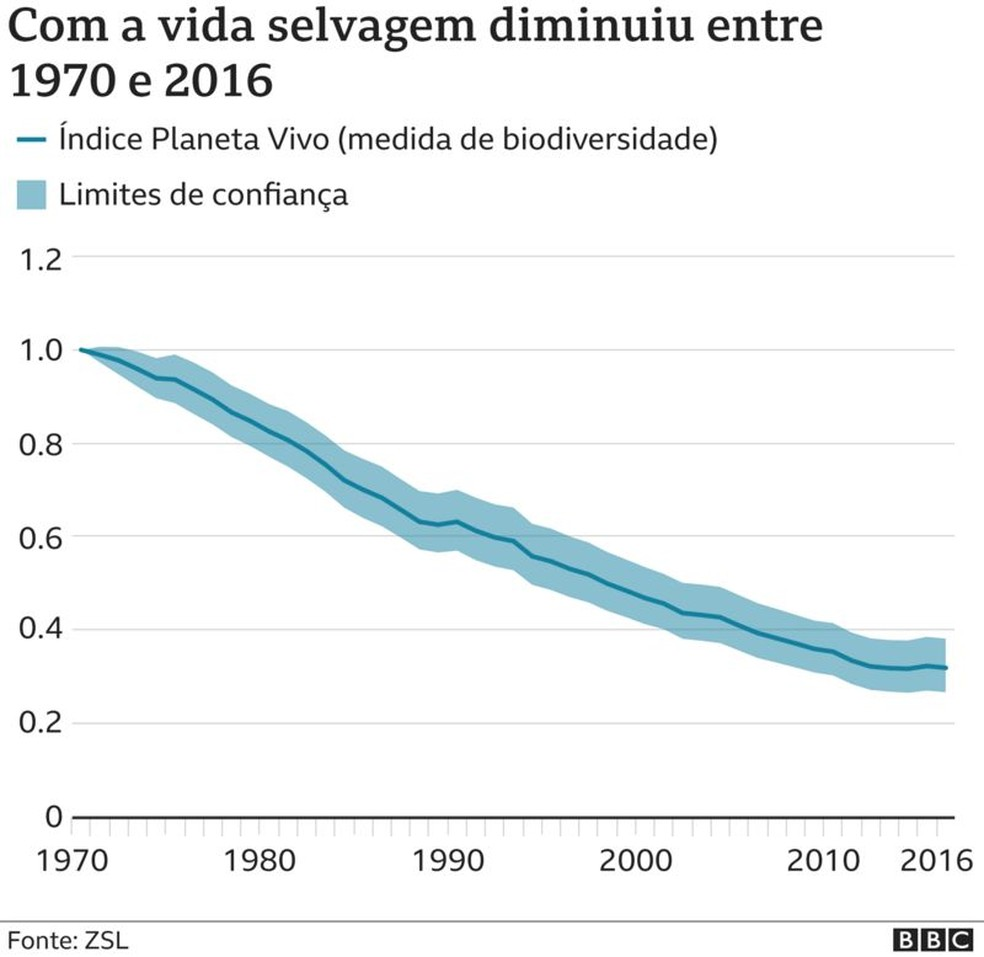 Como a vida selvagem diminuiu entre 1970 e 2016 — Foto: BBC