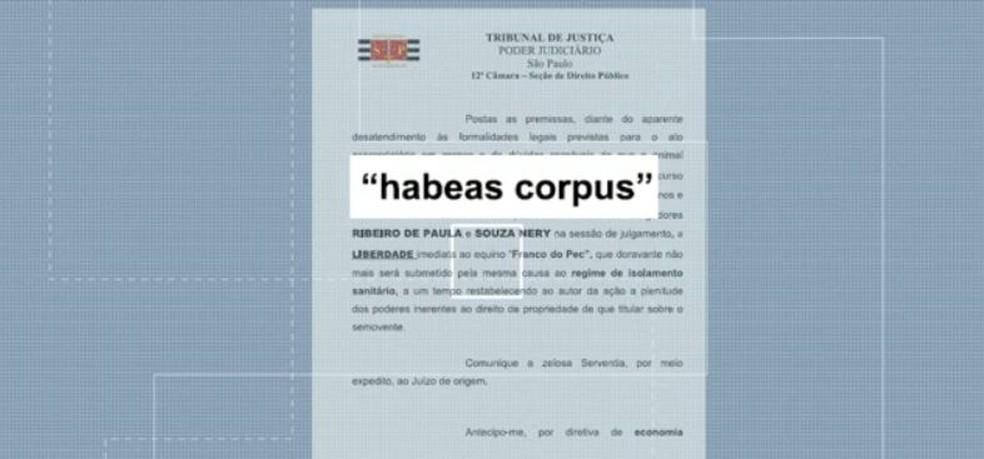 Justiça concede habeas corpus para evitar que cavalo fosse sacrificado em São João  - Foto: Reprodução EPTV