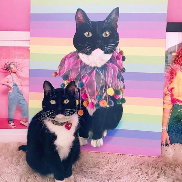 Seu Pet Art (Foto: Reprodução)